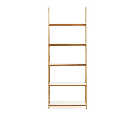 Francis Cayouette One Step Up Shelf