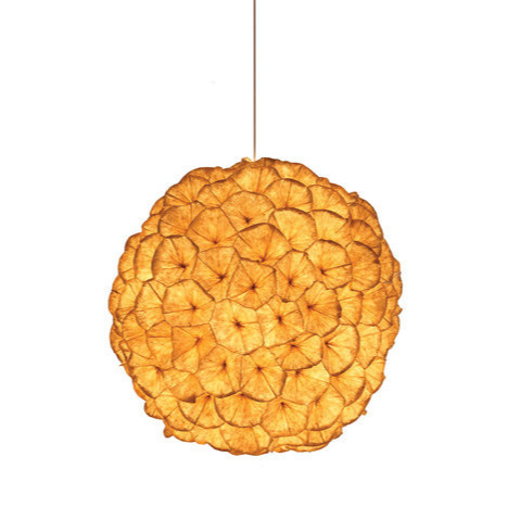 Kenneth Cobonpue Poppy Pendant Lamp