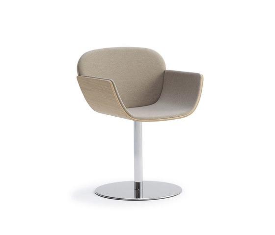 Luca Botto Haiku Chair