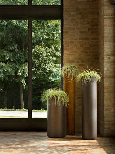R&D De Castelli Cohiba Planting