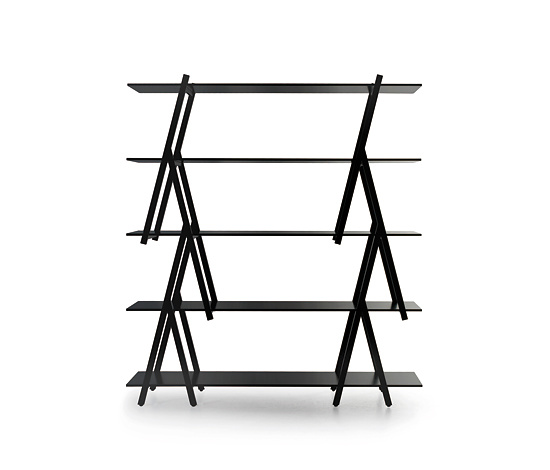 Takashi Kirimoto Branch Shelves