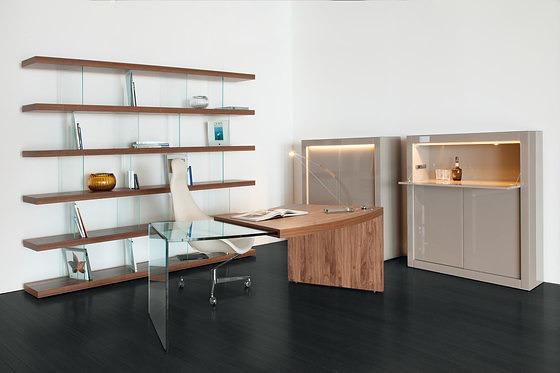 Tulczinsky Pegaso Desk