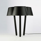 Marcel Sigel and Alana di Giacomo Woodland Table Lamp