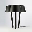 Marcel Sigel and Alana di Giacomo Woodland Table Lamp